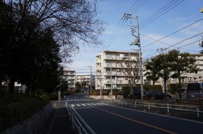 2012_0228_151335s