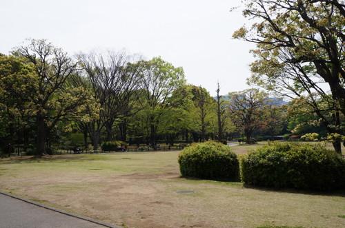 2013_0414_094020m