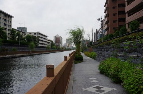 2013_0619_102210cm